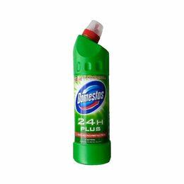 Domestos 24h Pine Fresh 750 ml
